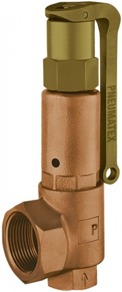 PNEUMATEX Sicherheitsventil DSV32-10 DGH, Rotguss